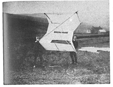 Wittgenstein and a kite