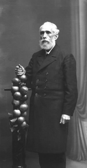Diedrich Uhlhorn