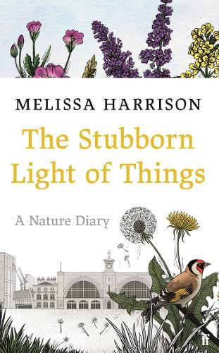 'The Stubborn Light of Things' by Melissa Harrison