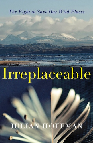 'Irreplaceable' by Julian Hoffman